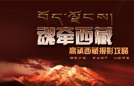 讲座《魂牵西藏—高承西藏摄影攻略》高承主讲