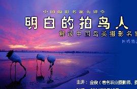 大讲堂《明白的拍鸟人——解读中国鸟类摄影名家王克举》金俊
